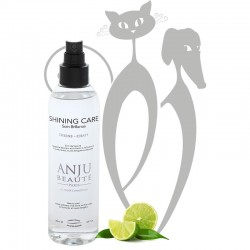 SHINING CARE - Anju Beauté